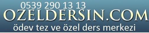 Özel Ders ve Bitirme tezi  0539 290 13 13